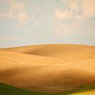 Sun over the Fields by Olga Zvereva
