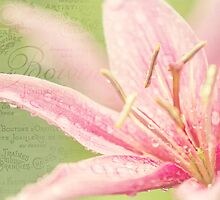 French Nostalgic Lilies by JennyRainbow