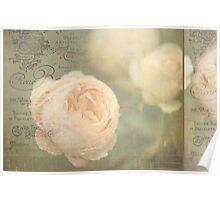 French Nostalgic Roses Poster