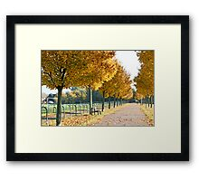 Autumn stroll Framed Print