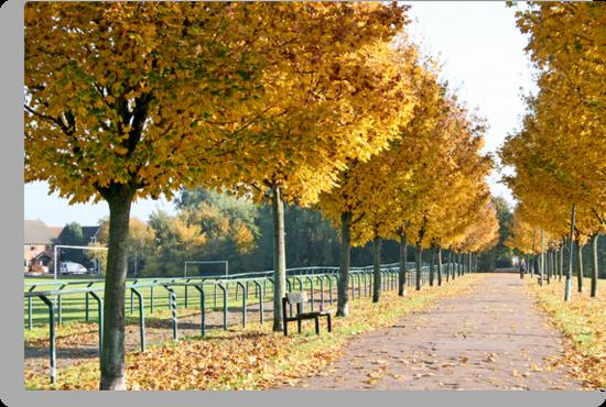 Autumn stroll by Jeanne Horak-Druiff
