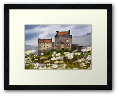 Eilean Donan Castle and Summer Flowers, Dornie, SCOTLAND. by photosecosse /barbara jones