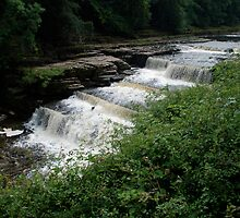 Aysgarth Falls - the middle bit by dougie1