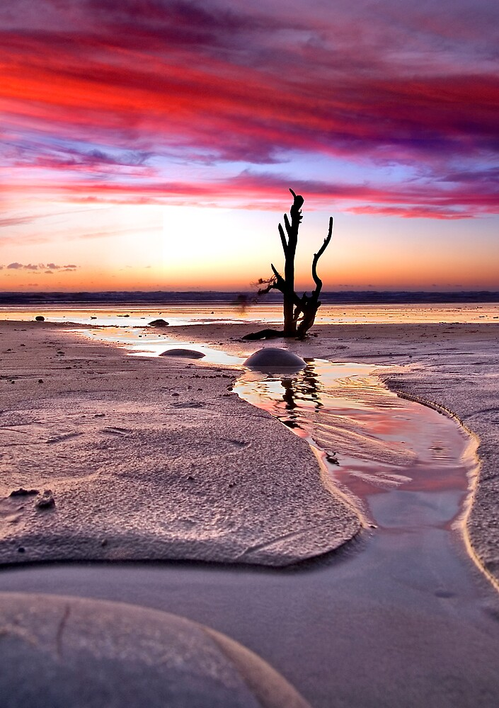 Stick in the sand 2 by Robert Kendall
