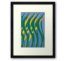 Bay Pipefish Framed Print