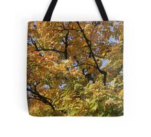 Eugene in the Fall Tote Bag