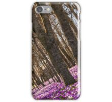 Blanket of Crocuses iPhone Case/Skin