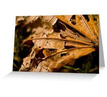 Ragged Leaf Greeting Card