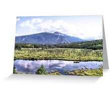 Alpine Marsh Greeting Card