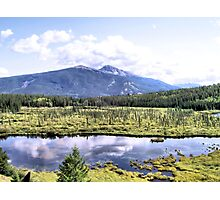 Alpine Marsh Photographic Print