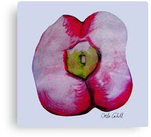 Red Pepper  Canvas Print