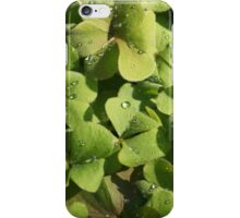 Dew on the Clover iPhone Case/Skin