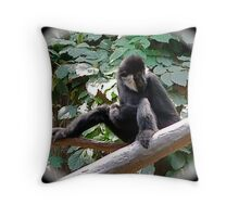 Being coy Throw Pillow