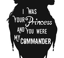 Silhouettes - Princess Commander by Blackrising