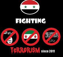 Syria-fighting terrorism since 2011 by SY98