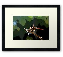 Dragons Touch Framed Print