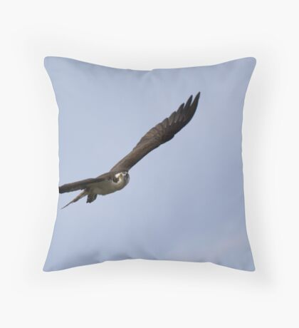 In-flight Stare Throw Pillow