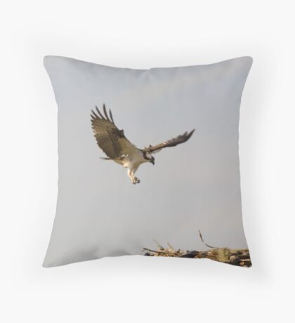 To the Nest Throw Pillow