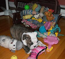 Isabelle and her Toys by Dina King