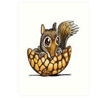 Squirrel In A Nutshell Art Print
