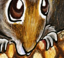 Squirrel In A Nutshell Sticker