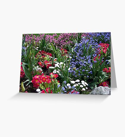 Spring Medley Greeting Card