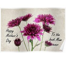 Mother's Day Mum Bouquet Poster