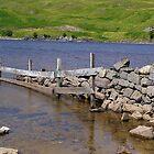 Loch Assynt, North Shore by lezvee