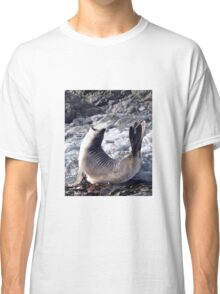 Elephant seal pup Classic T-Shirt