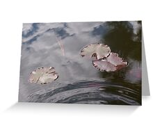 'Pond Lily' Greeting Card