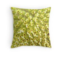 What Am I? Sunflower Centre & Seeds by TracyD & Rebecca Bryson Throw Pillow