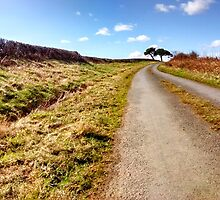 Sneaton back road, North Yorkshire Moors by apple88