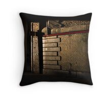 Sunlight and Shadows Throw Pillow