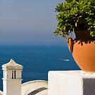 Capri, Italy by Daniel Webb