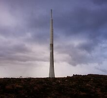 The Pinnacle-Mt Wellington, Tasmania by pmcphotography
