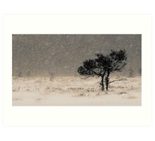 'Under the Snowstorm II' Art Print