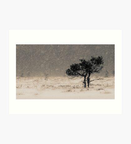 'Under the Snowstorm II' Art Print