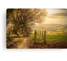 Country Tracks Canvas Print