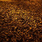 Leaves of Gold by sharath