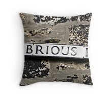 """"""" Street Names in St Ives"""" Throw Pillow"""
