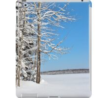 At the Forest Edge iPad Case/Skin