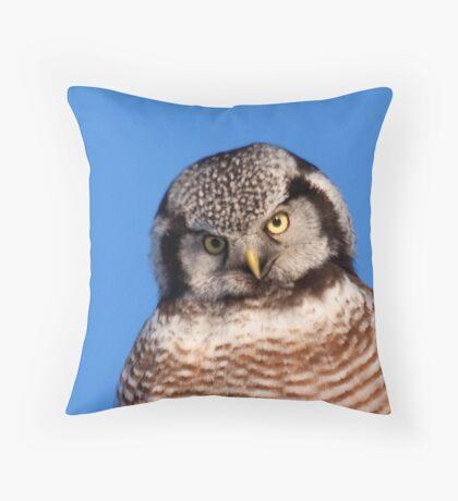 Northern Hawk Owl 5 Throw Pillow