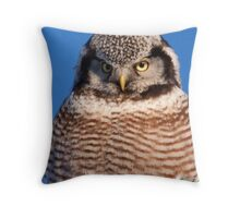 Northern Hawk Owl 6 Throw Pillow