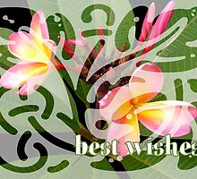Best Wishes by reflector