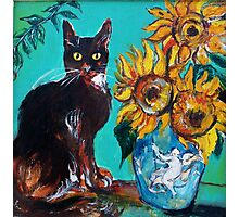 SUNFLOWERS WITH BLACK CAT IN BLUE TURQUOISE  Photographic Print