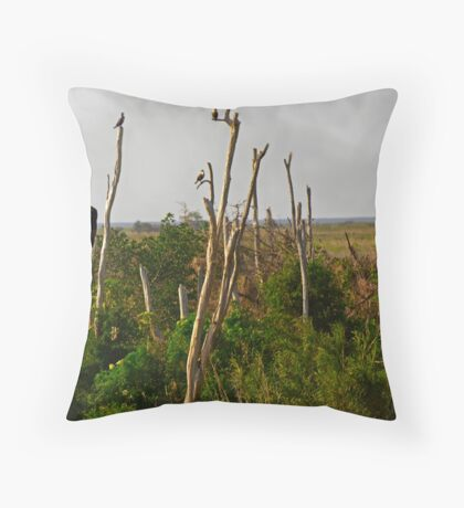 In the Glades Throw Pillow