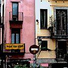 Viva Catalunya en Colores by cheffia