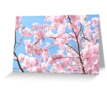 Blooming cherry tree - flower / floral design Greeting Card