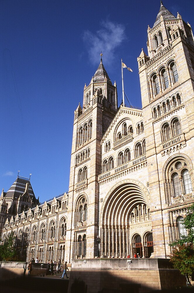 Natural History Museum by Pacey