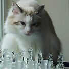 It's your move... by Marjorie Wallace